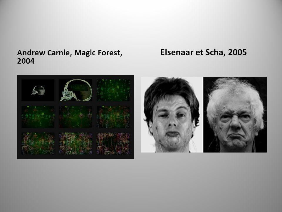 Andrew Carnie, Magic Forest, 2004 Elsenaar et Scha, 2005