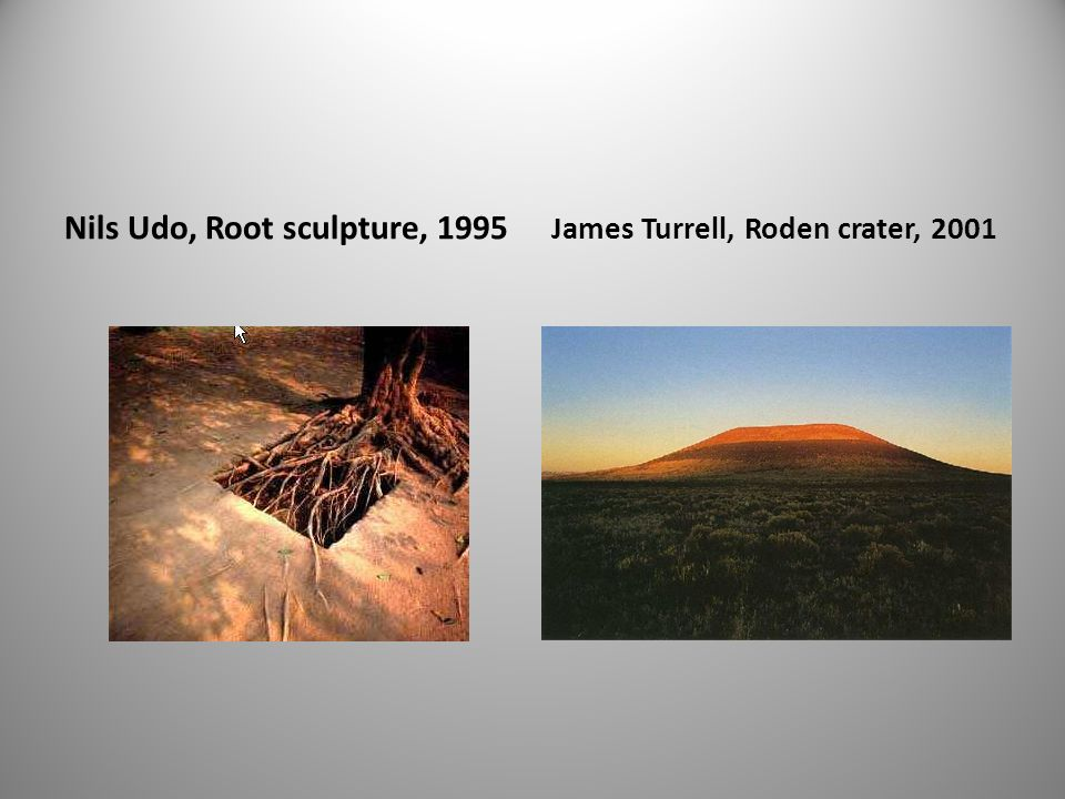 Nils Udo, Root sculpture, 1995 James Turrell, Roden crater, 2001