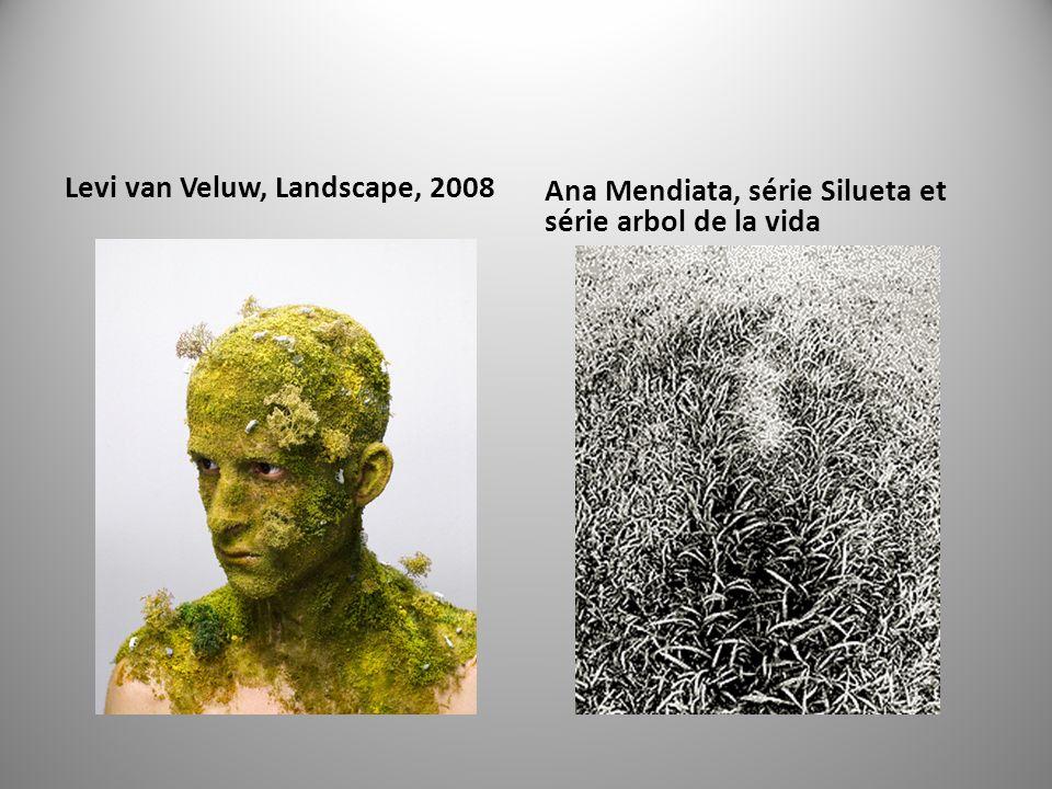 Levi van Veluw, Landscape, 2008 Ana Mendiata, série Silueta et série arbol de la vida