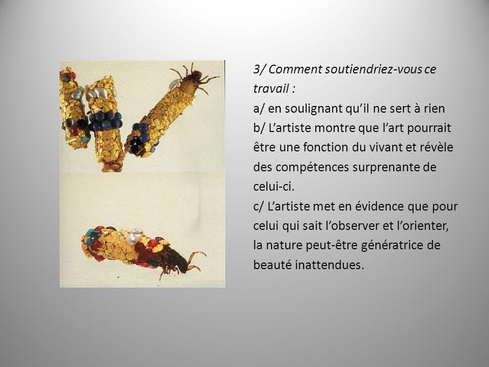 C/ Carsten Höller, Orang-outang, 2001 1/ Que représente limage projetée .