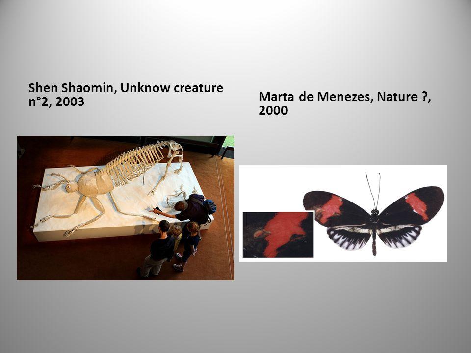 Shen Shaomin, Unknow creature n°2, 2003 Marta de Menezes, Nature ?, 2000