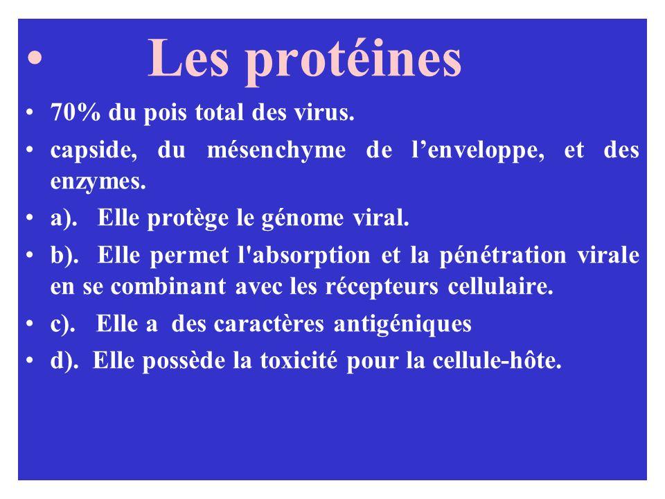 Les protéines 70% du pois total des virus. capside, du mésenchyme de lenveloppe, et des enzymes. a). Elle protège le génome viral. b). Elle permet l'a