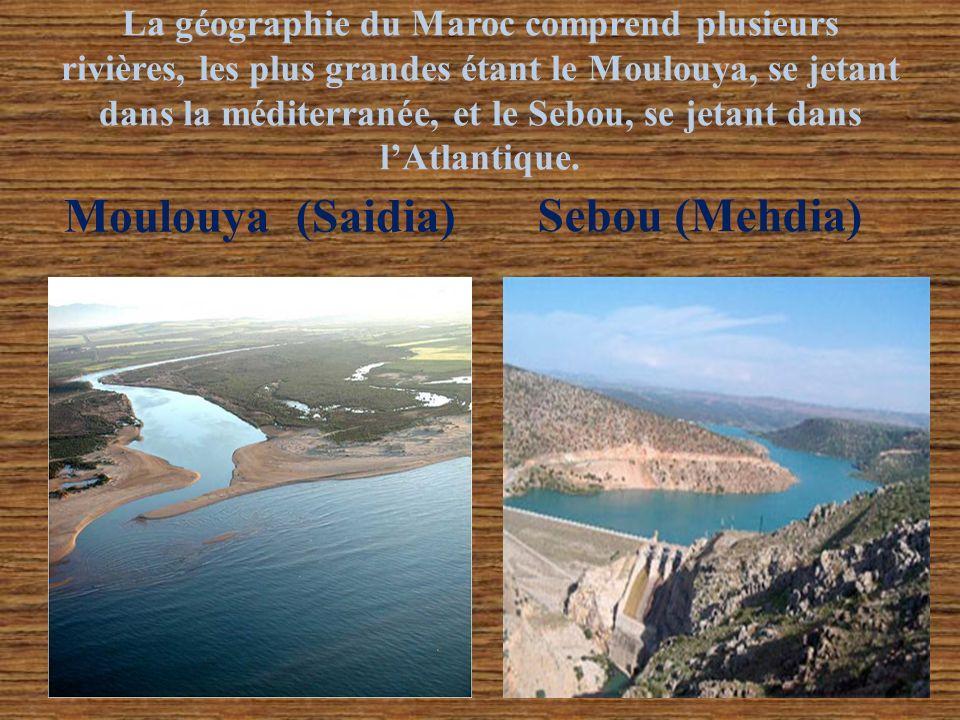 La géographie du Maroc comprend plusieurs rivières, les plus grandes étant le Moulouya, se jetant dans la méditerranée, et le Sebou, se jetant dans lA