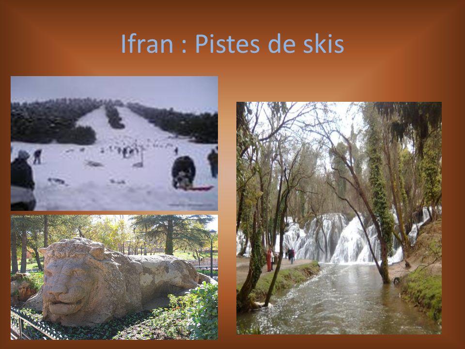 Ifran : Pistes de skis