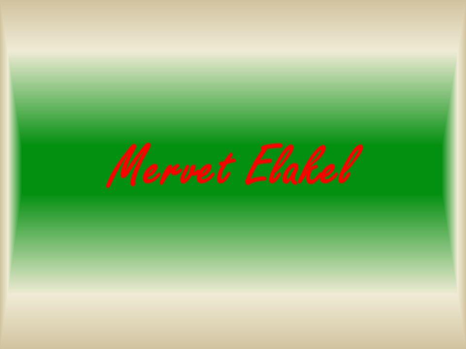 Mervet Elakel
