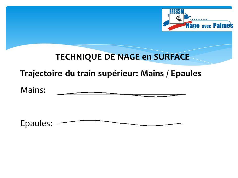TECHNIQUE DE NAGE en SURFACE Trajectoire du train supérieur: Mains / Epaules Mains: Epaules: