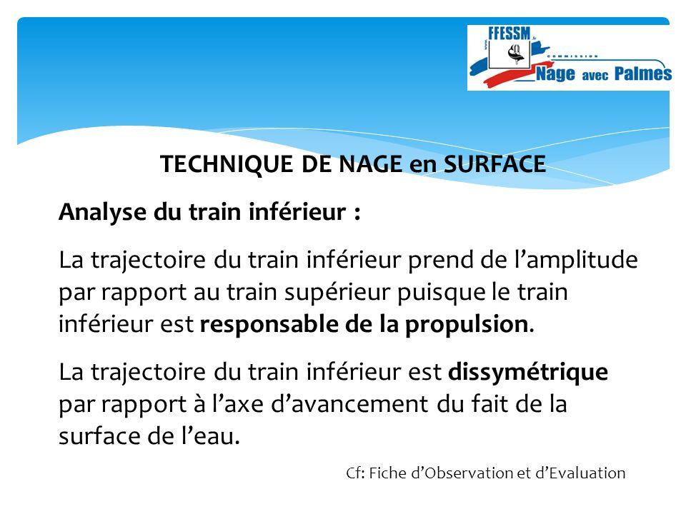 TECHNIQUE DE NAGE en SURFACE Analyse du train inférieur : La trajectoire du train inférieur prend de lamplitude par rapport au train supérieur puisque le train inférieur est responsable de la propulsion.