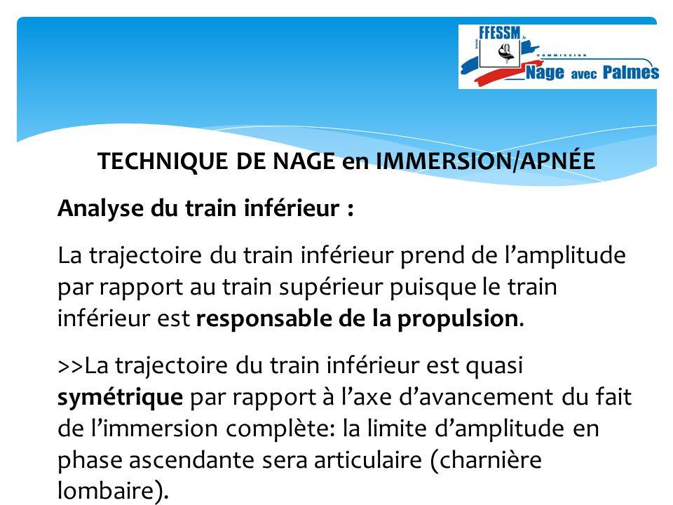 TECHNIQUE DE NAGE en IMMERSION/APNÉE Analyse du train inférieur : La trajectoire du train inférieur prend de lamplitude par rapport au train supérieur puisque le train inférieur est responsable de la propulsion.