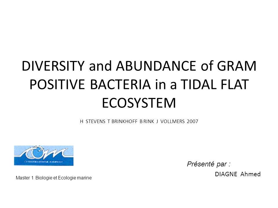 Objectif de létude Montrer labondance et la diversité des bactéries gram+ dans un écosystème sous influence de marée.
