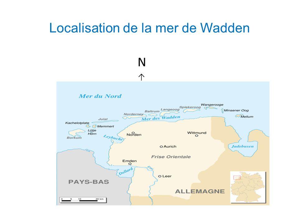 Localisation de la mer de Wadden N