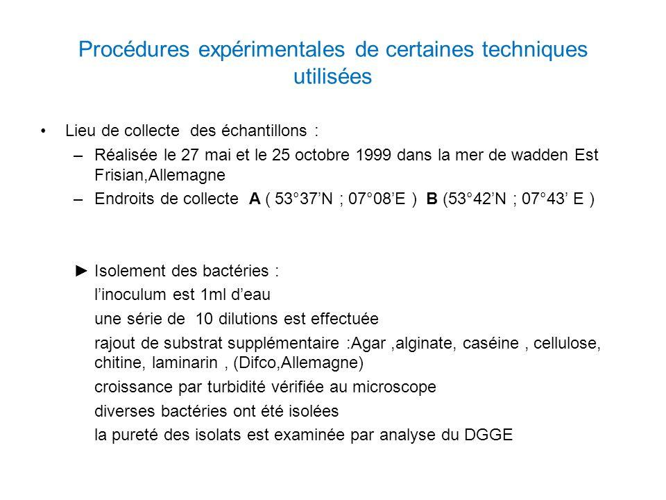 Procédures expérimentales de certaines techniques utilisées Lieu de collecte des échantillons : –Réalisée le 27 mai et le 25 octobre 1999 dans la mer de wadden Est Frisian,Allemagne –Endroits de collecte A ( 53°37N ; 07°08E ) B (53°42N ; 07°43 E ) Isolement des bactéries : linoculum est 1ml deau une série de 10 dilutions est effectuée rajout de substrat supplémentaire :Agar,alginate, caséine, cellulose, chitine, laminarin, (Difco,Allemagne) croissance par turbidité vérifiée au microscope diverses bactéries ont été isolées la pureté des isolats est examinée par analyse du DGGE