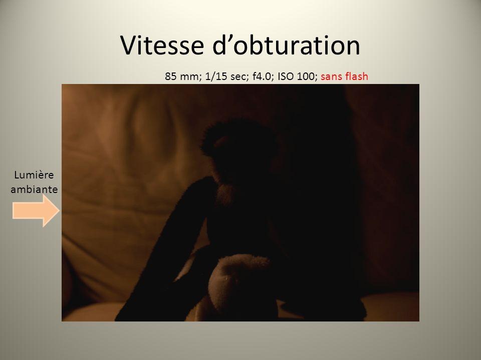 Vitesse dobturation 85 mm; 1/15 sec; f4.0; ISO 100; sans flash Lumière ambiante