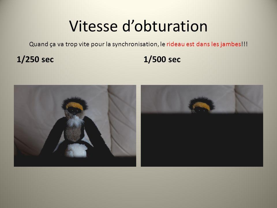 Vitesse dobturation 1/250 sec1/500 sec Quand ça va trop vite pour la synchronisation, le rideau est dans les jambes!!!