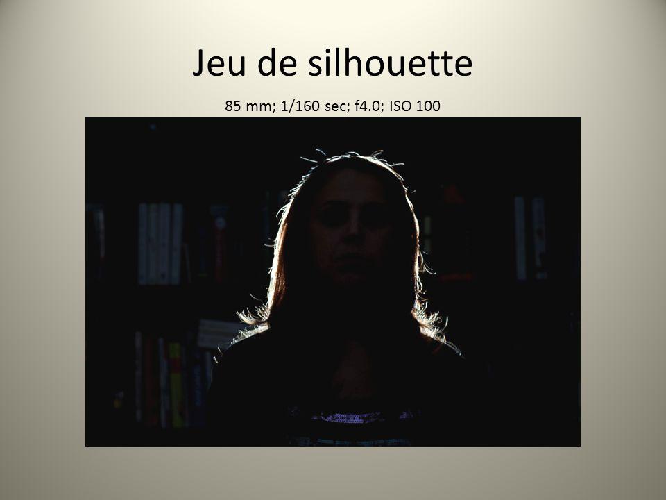 Jeu de silhouette 85 mm; 1/160 sec; f4.0; ISO 100