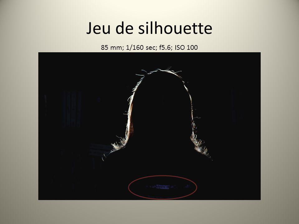 Jeu de silhouette 85 mm; 1/160 sec; f5.6; ISO 100