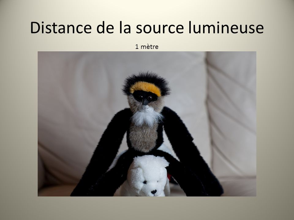 Distance de la source lumineuse 1 mètre