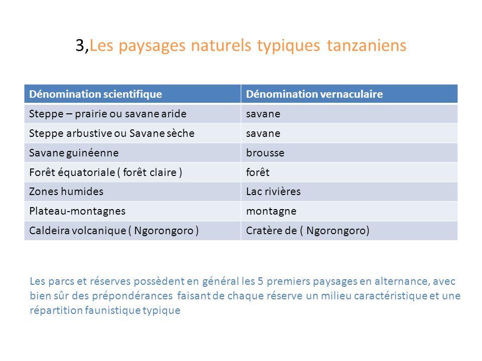 3,Les paysages naturels typiques tanzaniens Dénomination scientifiqueDénomination vernaculaire Steppe – prairie ou savane aridesavane Steppe arbustive ou Savane sèchesavane Savane guinéennebrousse Forêt équatoriale ( forêt claire )forêt Zones humidesLac rivières Plateau-montagnesmontagne Caldeira volcanique ( Ngorongoro )Cratère de ( Ngorongoro) Les parcs et réserves possèdent en général les 5 premiers paysages en alternance, avec bien sûr des prépondérances faisant de chaque réserve un milieu caractéristique et une répartition faunistique typique