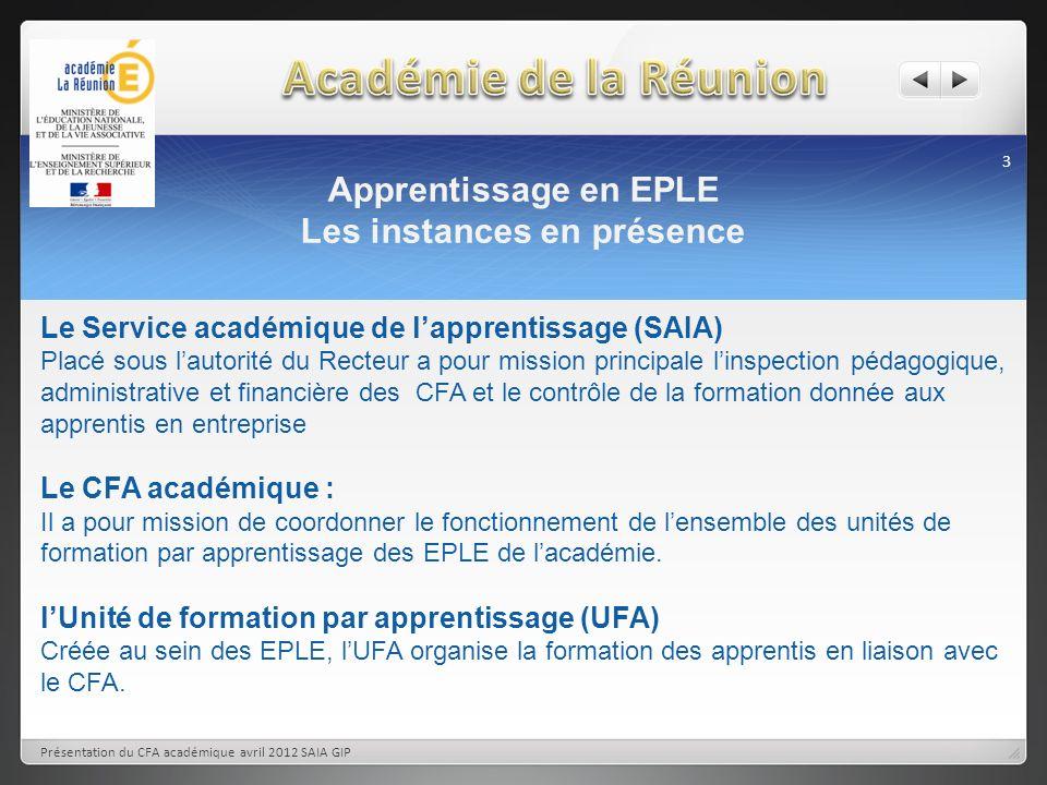 Apprentissage en EPLE Les instances en présence 3 Présentation du CFA académique avril 2012 SAIA GIP Le Service académique de lapprentissage (SAIA) Pl