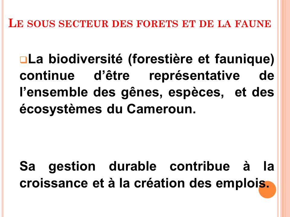 L E SOUS SECTEUR DES FORETS ET DE LA FAUNE La biodiversité (forestière et faunique) continue dêtre représentative de lensemble des gênes, espèces, et