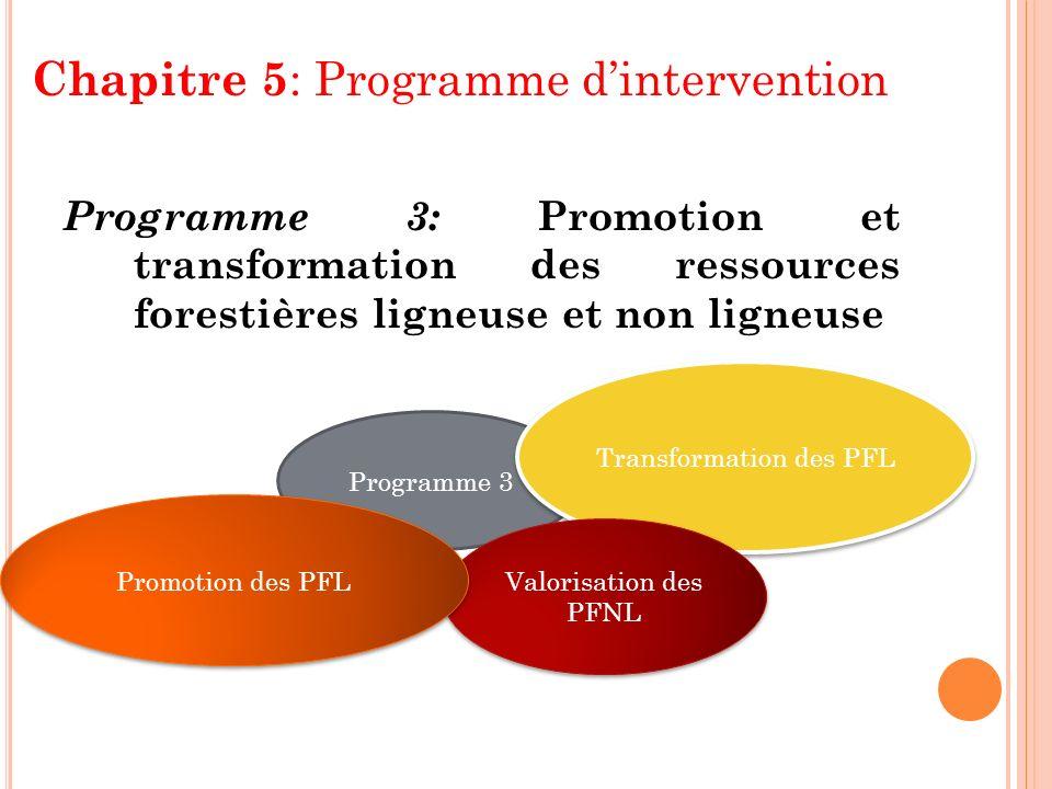 Chapitre 5 : Programme dintervention Programme 3: Promotion et transformation des ressources forestières ligneuse et non ligneuse Programme 3 Transfor