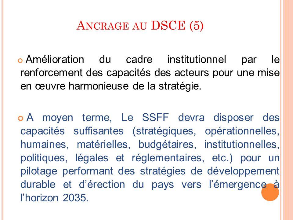 A NCRAGE AU DSCE (5) Amélioration du cadre institutionnel par le renforcement des capacités des acteurs pour une mise en œuvre harmonieuse de la strat