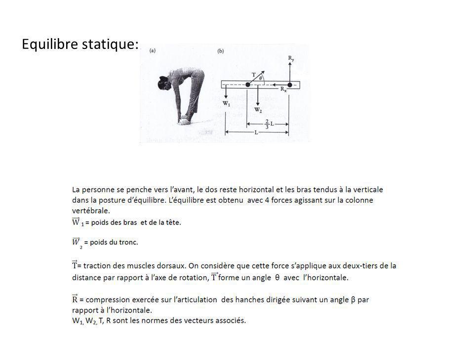 Equilibre statique: