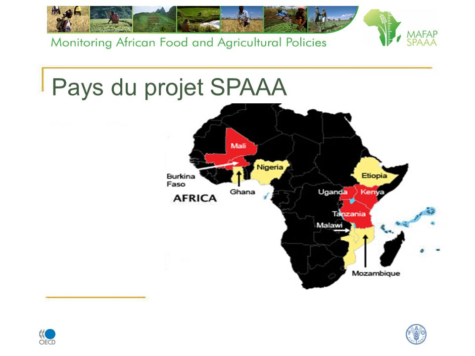 five countries with in-depth analysis five countries with preparatory activities Pays du projet SPAAA