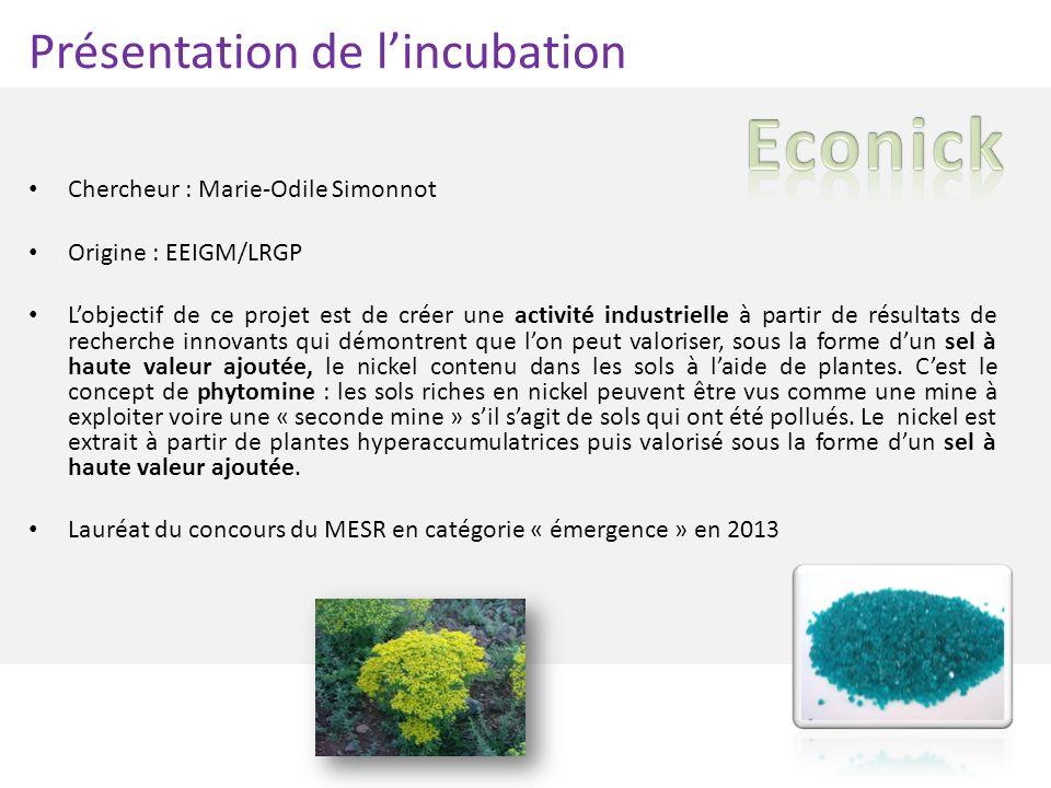 Présentation de lincubation Chercheur : Marie-Odile Simonnot Origine : EEIGM/LRGP Lobjectif de ce projet est de créer une activité industrielle à part