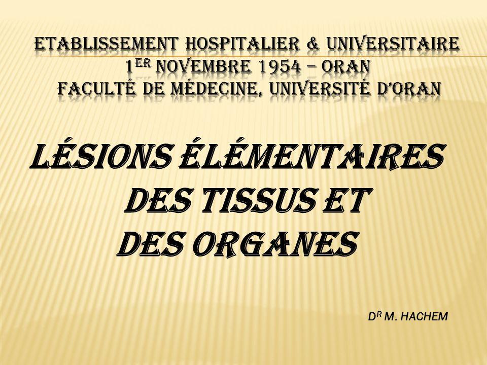 Lésions élémentaires des tissus et des organes D R M. HACHEM