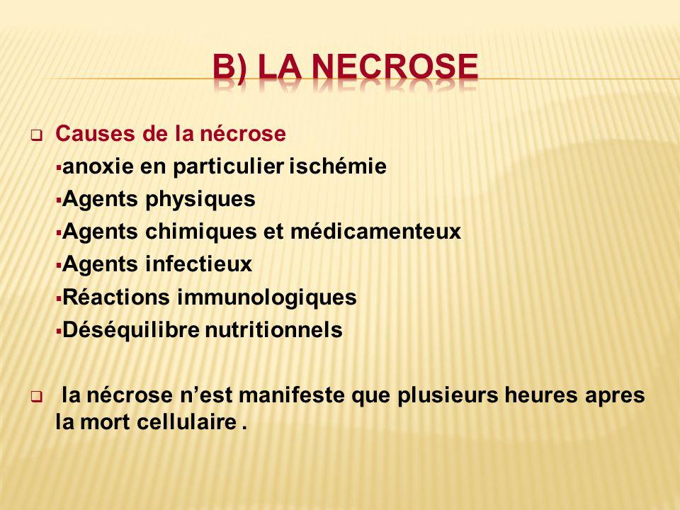 Causes de la nécrose anoxie en particulier ischémie Agents physiques Agents chimiques et médicamenteux Agents infectieux Réactions immunologiques Désé