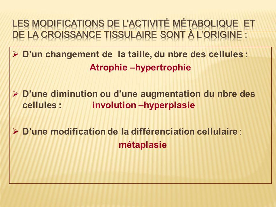 Dun changement de la taille, du nbre des cellules : Atrophie –hypertrophie Dune diminution ou dune augmentation du nbre des cellules : involution –hyp