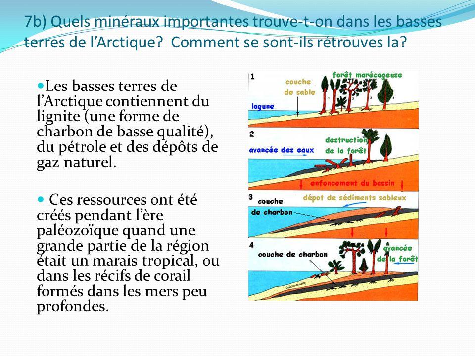 7b) Quels minéraux importantes trouve-t-on dans les basses terres de lArctique? Comment se sont-ils rétrouves la? Les basses terres de lArctique conti