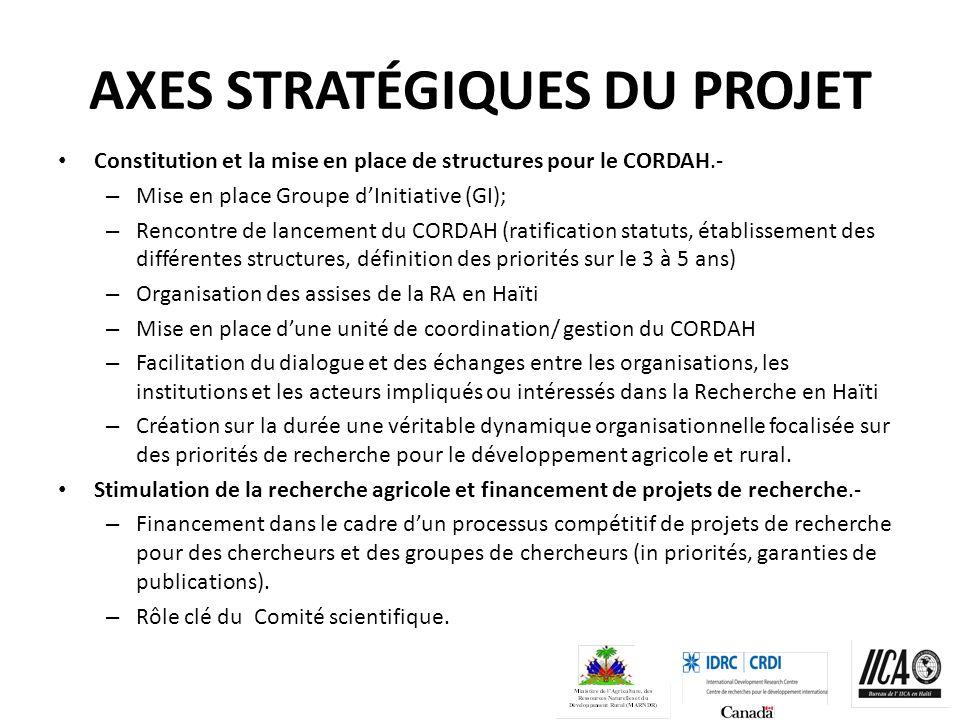 AXES STRATÉGIQUES DU PROJET Constitution et la mise en place de structures pour le CORDAH.- – Mise en place Groupe dInitiative (GI); – Rencontre de la