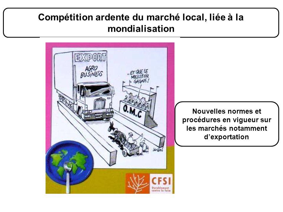 Compétition ardente du marché local, liée à la mondialisation Nouvelles normes et procédures en vigueur sur les marchés notamment dexportation