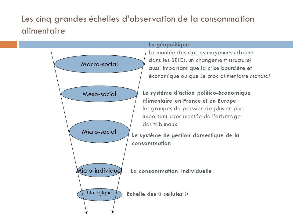 Les cinq grandes échelles dobservation de la consommation alimentaire biologique Micro-individuel Micro-social Meso-social Macro-social La géopolitiqu