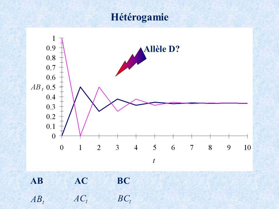 Hétérogamie ABACBC AB t AC t BC t Allèle D?
