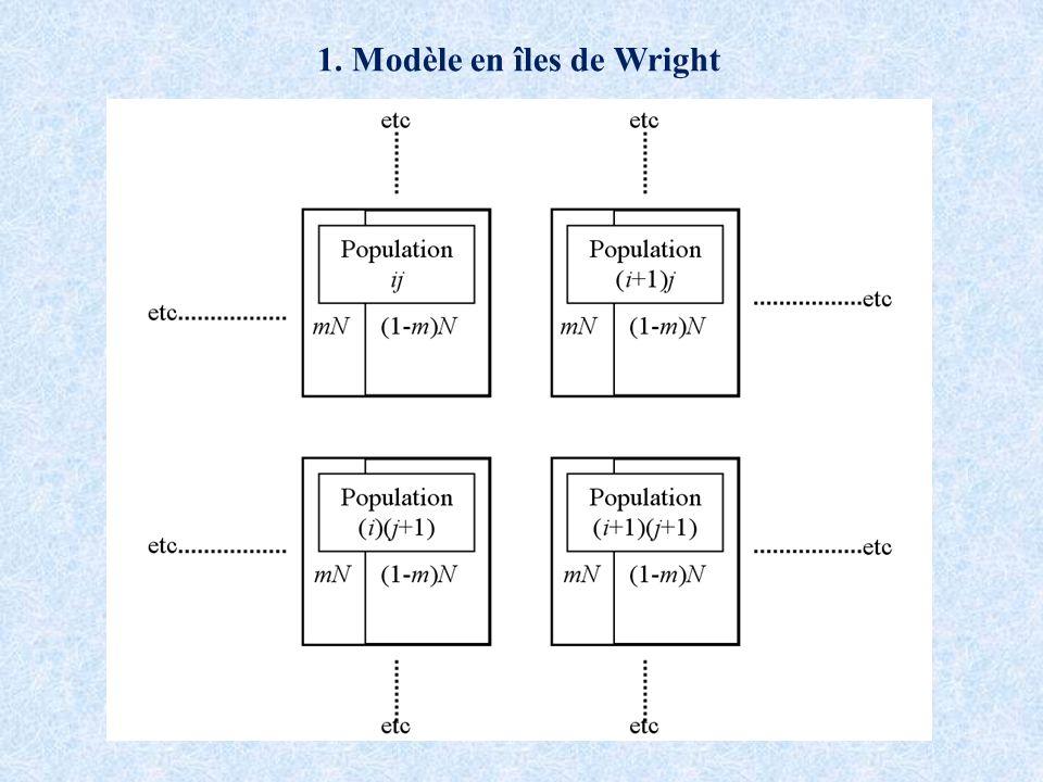 1. Modèle en îles de Wright