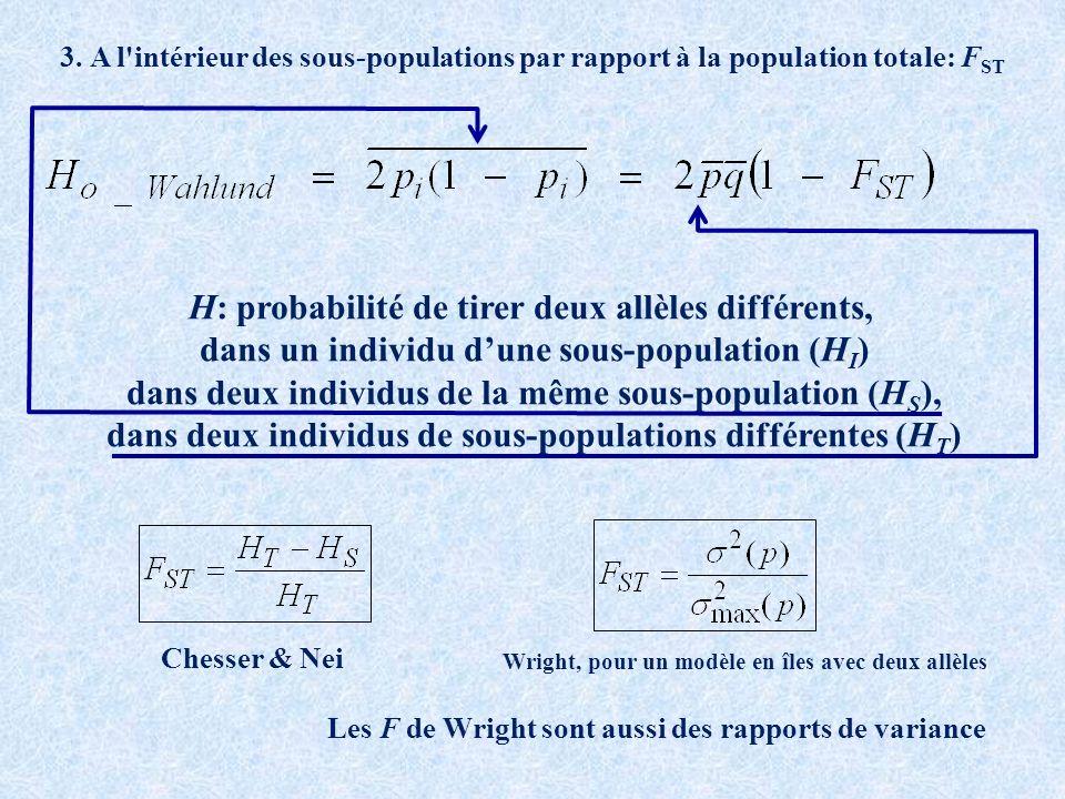 H: probabilité de tirer deux allèles différents, dans un individu dune sous-population (H I ) dans deux individus de la même sous-population (H S ), dans deux individus de sous-populations différentes (H T ) Wright, pour un modèle en îles avec deux allèles Les F de Wright sont aussi des rapports de variance 3.
