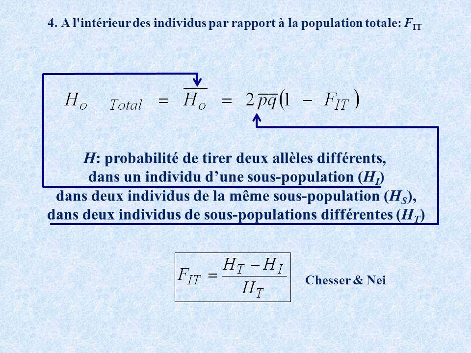 H: probabilité de tirer deux allèles différents, dans un individu dune sous-population (H I ) dans deux individus de la même sous-population (H S ), dans deux individus de sous-populations différentes (H T ) 4.