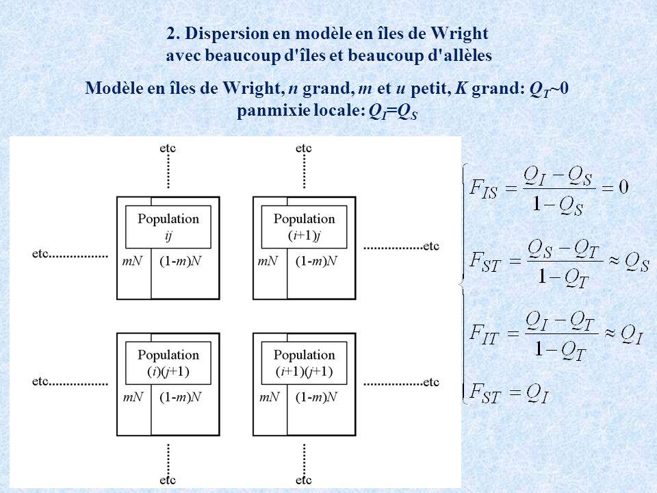 2. Dispersion en modèle en îles de Wright avec beaucoup d'îles et beaucoup d'allèles Modèle en îles de Wright, n grand, m et u petit, K grand: Q T ~0