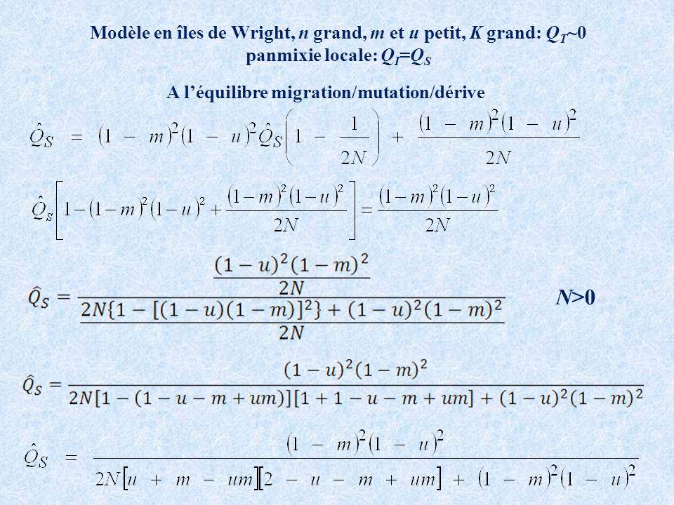 Modèle en îles de Wright, n grand, m et u petit, K grand: Q T ~0 panmixie locale: Q I =Q S A léquilibre migration/mutation/dérive N>0