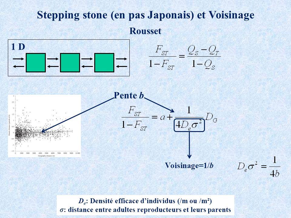 1 D Stepping stone (en pas Japonais) et Voisinage Rousset Pente b D e : Densité efficace dindividus (/m ou /m²) σ: distance entre adultes reproducteurs et leurs parents Voisinage=1/b