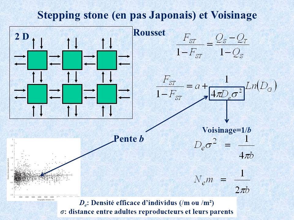 2 D Stepping stone (en pas Japonais) et Voisinage Pente b D e : Densité efficace dindividus (/m ou /m²) σ: distance entre adultes reproducteurs et leurs parents Voisinage=1/b Rousset