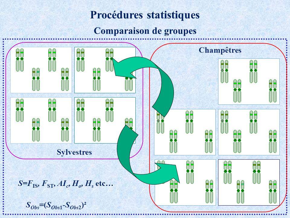 Procédures statistiques Comparaison de groupes S=F IS, F ST, AI c, H o, H s etc… S Obs =(S Obs1 -S Obs2 )² Sylvestres Champêtres