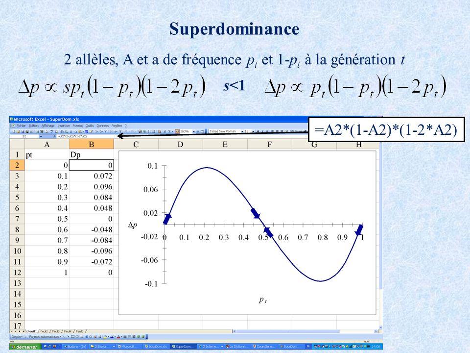 Superdominance 2 allèles, A et a de fréquence p t et 1-p t à la génération t s<1 =A2*(1-A2)*(1-2*A2)