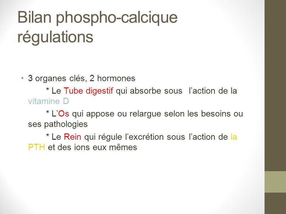 Bilan phospho-calcique régulations 3 organes clés, 2 hormones * Le Tube digestif qui absorbe sous laction de la vitamine D * LOs qui appose ou relargu