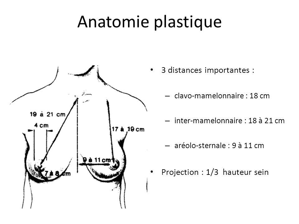 Anatomie plastique 3 distances importantes : – clavo-mamelonnaire : 18 cm – inter-mamelonnaire : 18 à 21 cm – aréolo-sternale : 9 à 11 cm Projection :