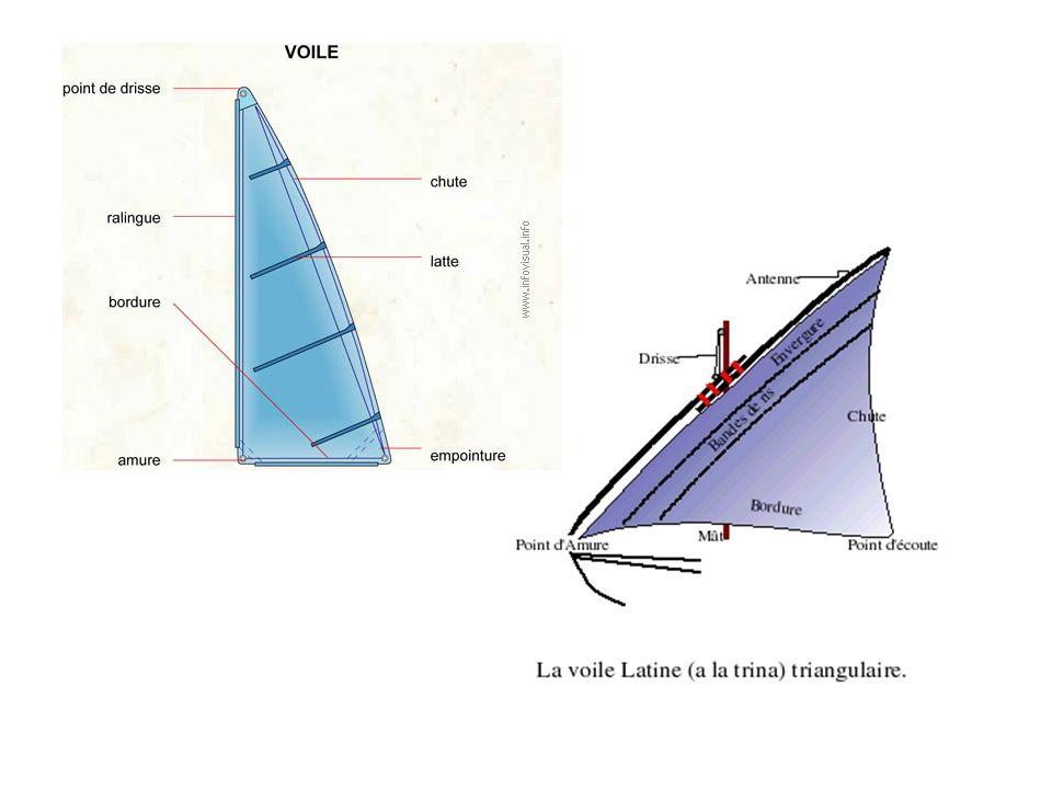 Voile triangulaire (appelée à l origine alla trina : à trois pointes) enverguée sur une antenne, composée de deux parties : le quart (partie basse) et la penne (partie haute).