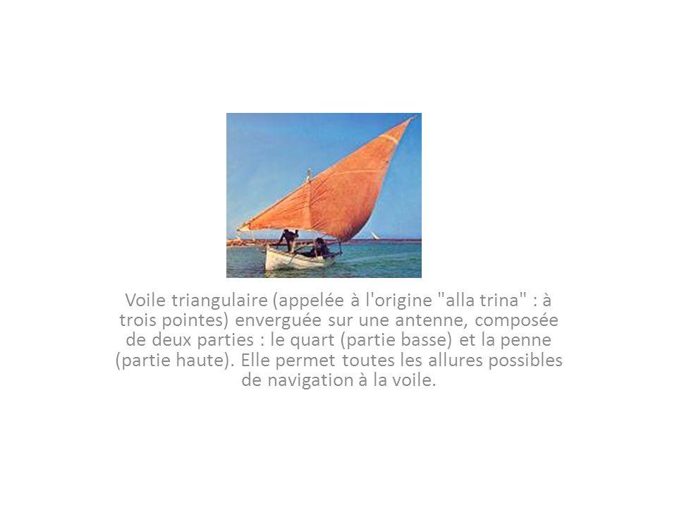 Gréement caractérisé par un type de voile particulier : la voile à houari.