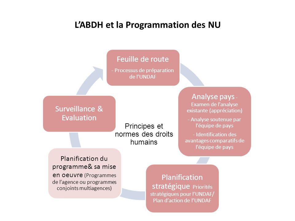 Des options pour lanalyse pays Quelle que soit loption: LABDH et tous les 4 autres principes de programmation représentent des critères pour assurer une analyse de bonne qualité; Une analyse pays solide a plus de chance de mener vers un UNDAF solide et finalement vers une programmation solide au niveau de lagence.